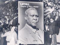 Luthuli6